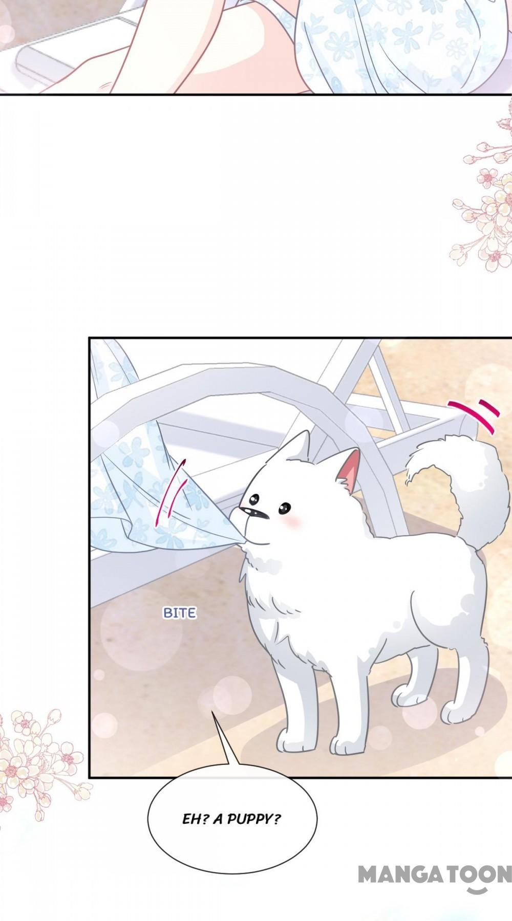 Love Me Gently, Bossy Ceo Chapter 163 page 32 - Mangakakalots.com