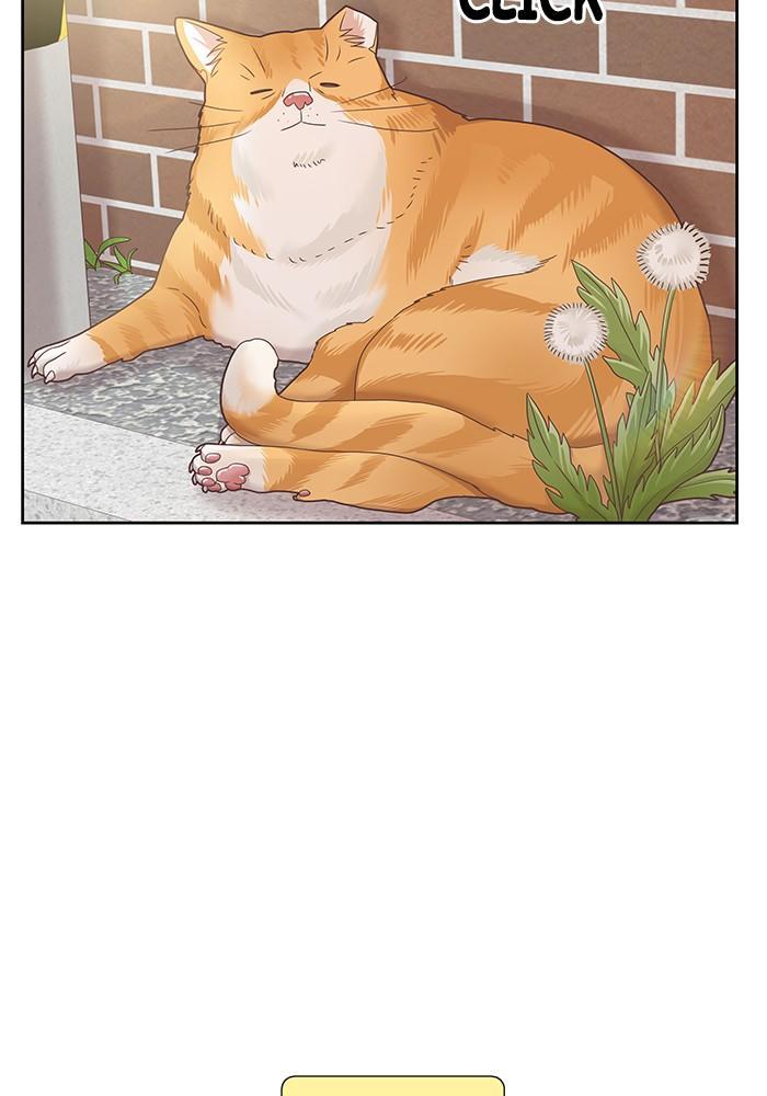 Girl's World Chapter 272: 272 - Part 2.58 page 14 - Mangakakalots.com