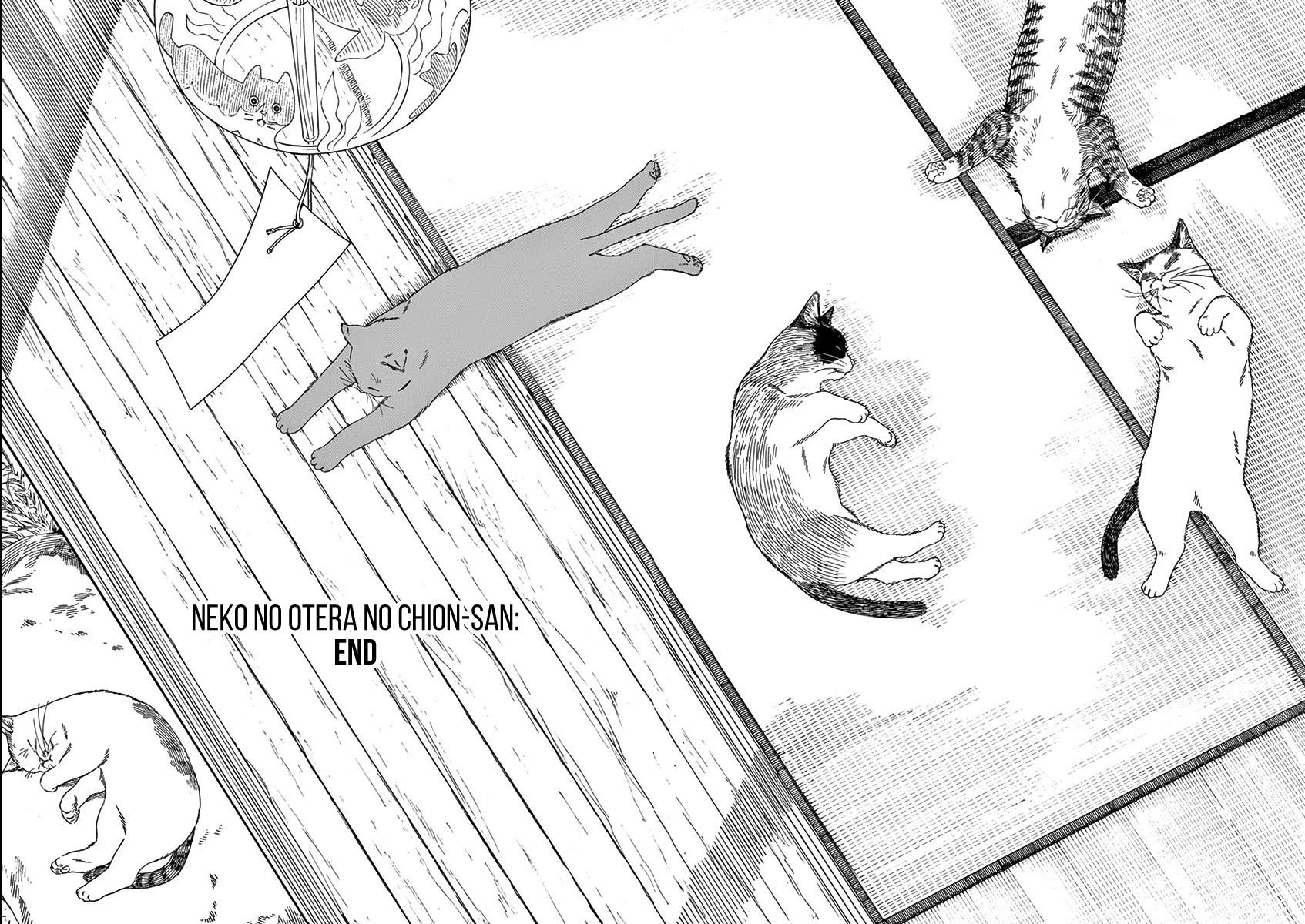 Neko No Otera No Chion-San Chapter 79: Cats, Gen And Chion-San page 20 - Mangakakalots.com