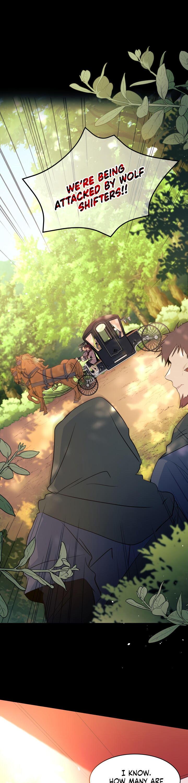 A Symbiotic Relationship Between A Rabbit And A Black Panther Chapter 27 page 2 - Mangakakalots.com