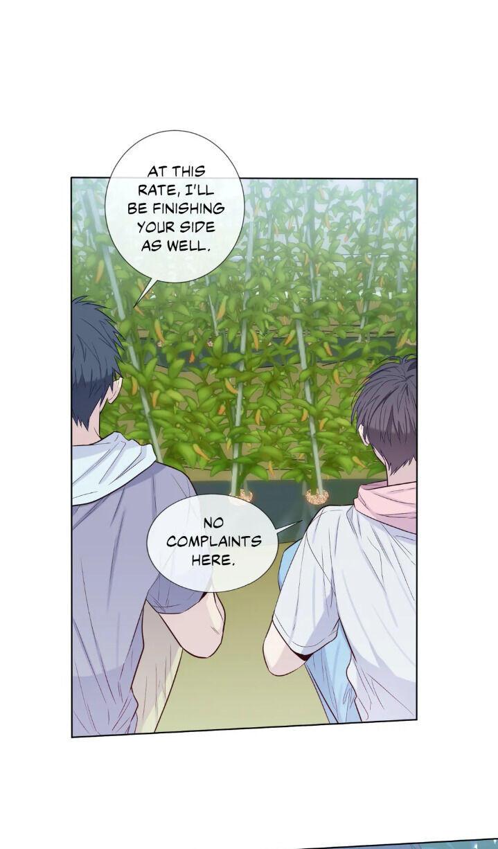 Summer's Guest Chapter 18 page 36 - Mangakakalots.com