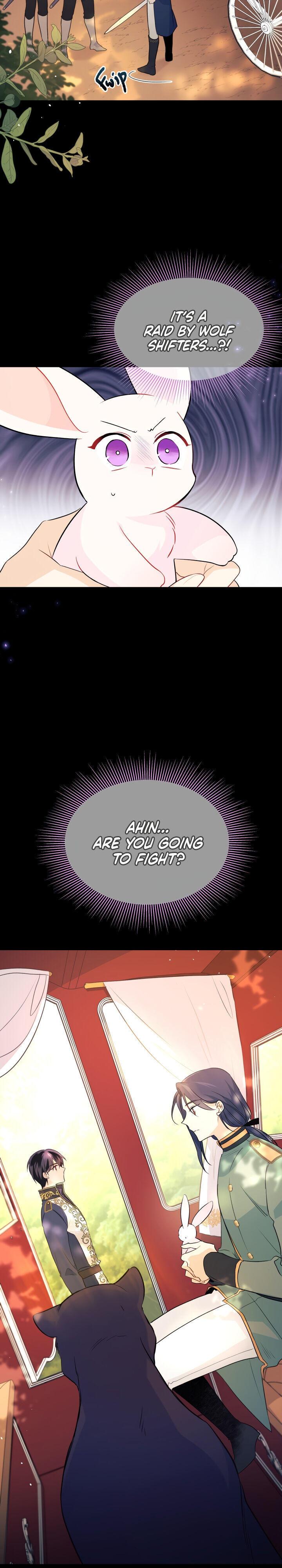 A Symbiotic Relationship Between A Rabbit And A Black Panther Chapter 27 page 4 - Mangakakalots.com