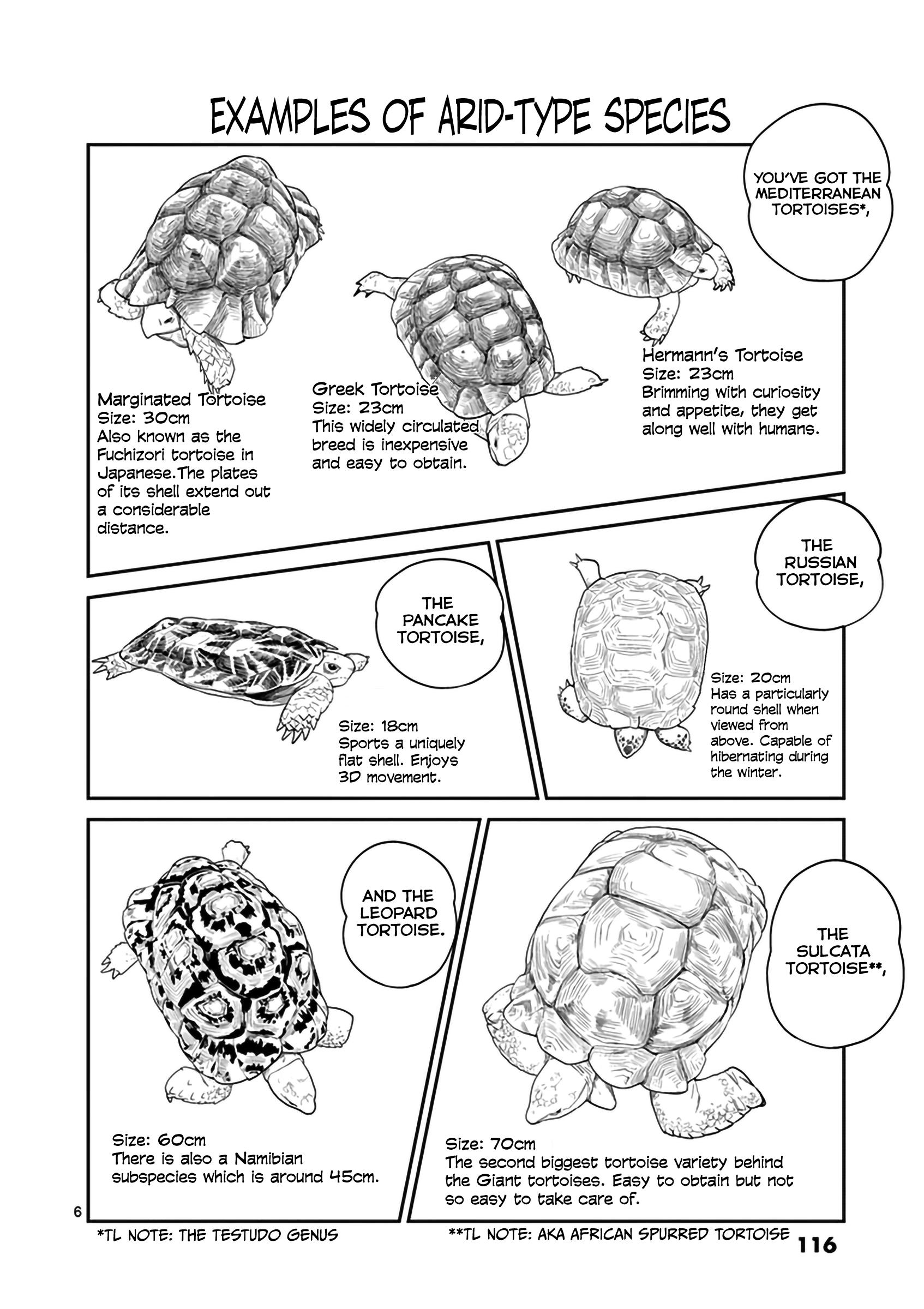 Secret Reptiles Vol.2 Chapter 15: Species #15 - Wow This Story Is Sobering... page 7 - Mangakakalots.com